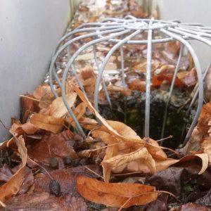 chéneaux encombré de feuilles mortes