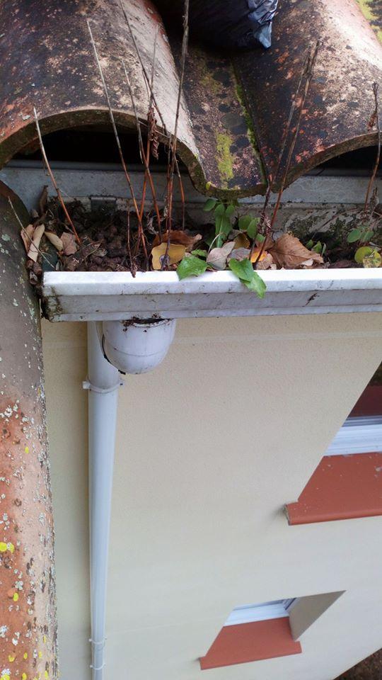 Nettoyage en hauteur des chéneaux gouttières et descentes de toit